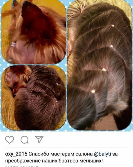 Модные женские стрижки для вьющихся волос на 2017 год: фото каскада