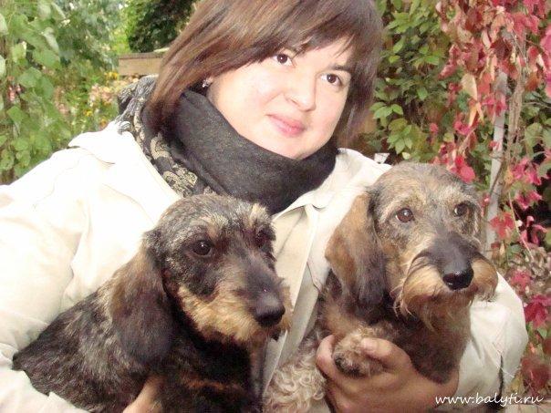 ОПЫТ РАБОТЫ Период с 2006г.  Мастер по триммингу жесткошерстных пород собак: жесткошерстная такса, джек рассел терьер...