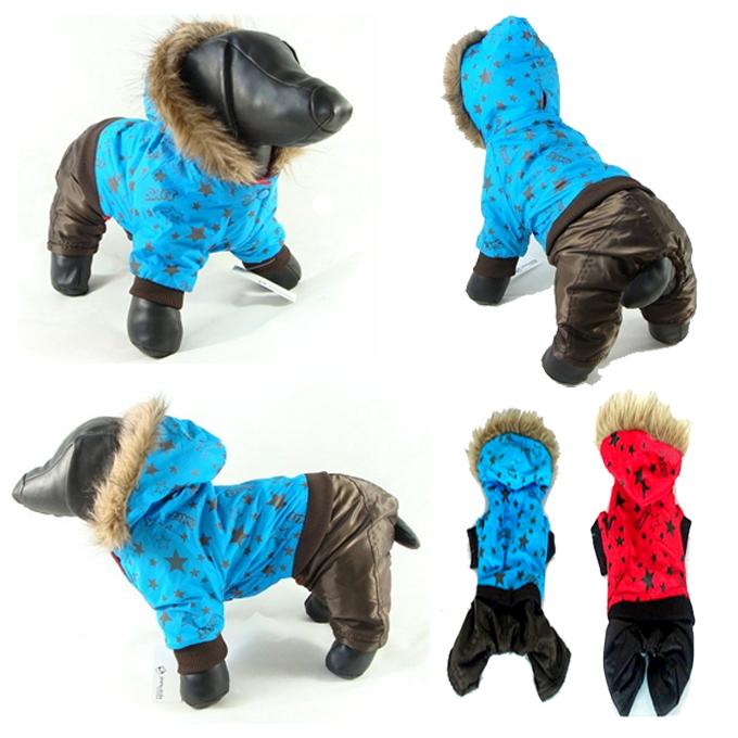 Одежда для собак чихуа